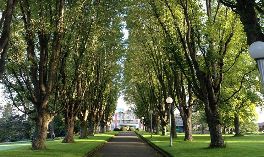Camosun College: The Next Generation of Community Engagement